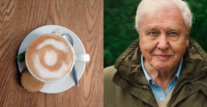 Utopie melkschuim (links) & David Attenborough (rechts)